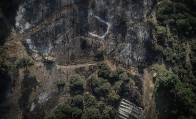 Çanakkale yangını: İnsanlar iyi, 'canlar' gitti