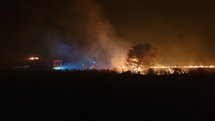 Çanakkale yangını: İnsanlar iyi, 'canlar' gitti - Sayfa 3
