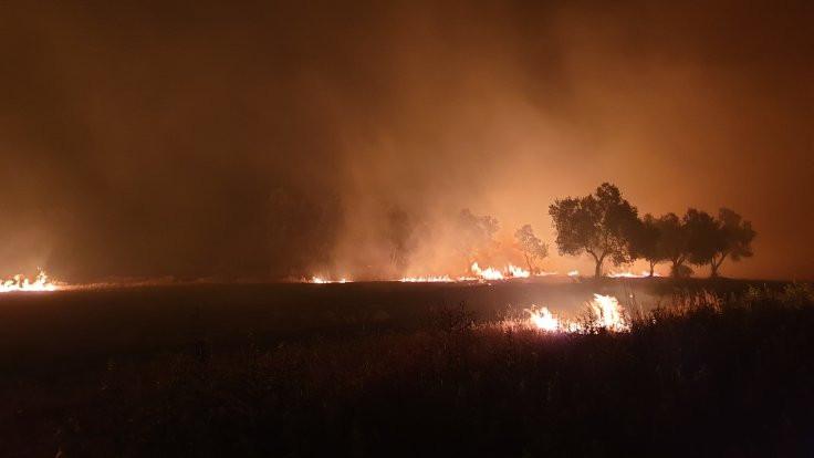 Çanakkale yangını: İnsanlar iyi, 'canlar' gitti - Sayfa 1