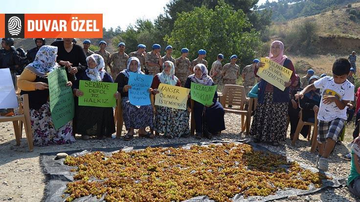 Manisa'da çevrecilerin itirazı: JES tarımı öldürür