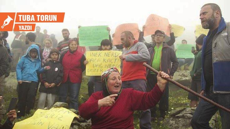 Çevreci kadın mücadelesi ya da ekofeminizm