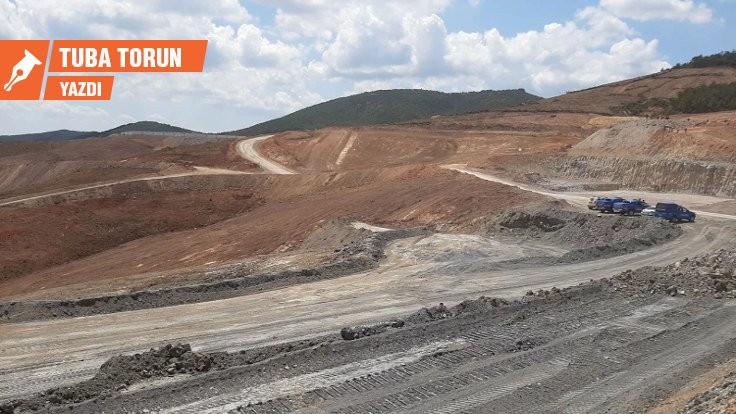Kaz Dağları: Kısa günün kârı