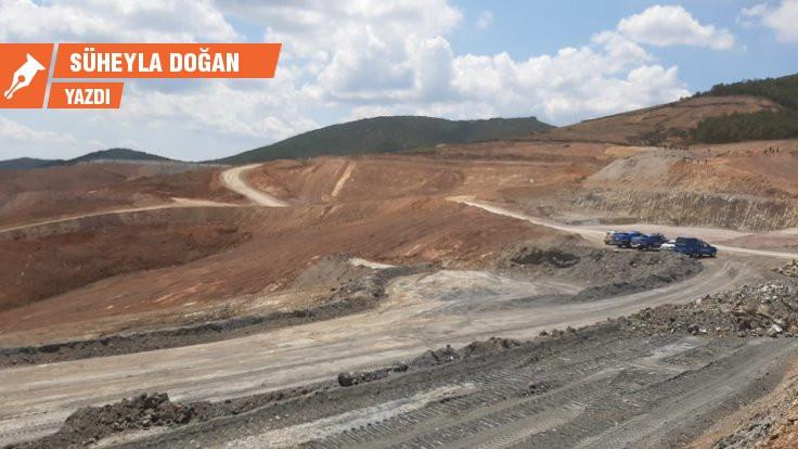 Kaz Dağları: Kârı şirketlere zararı halka