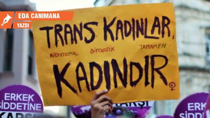 Cis-feminizmin iktidar savaşı