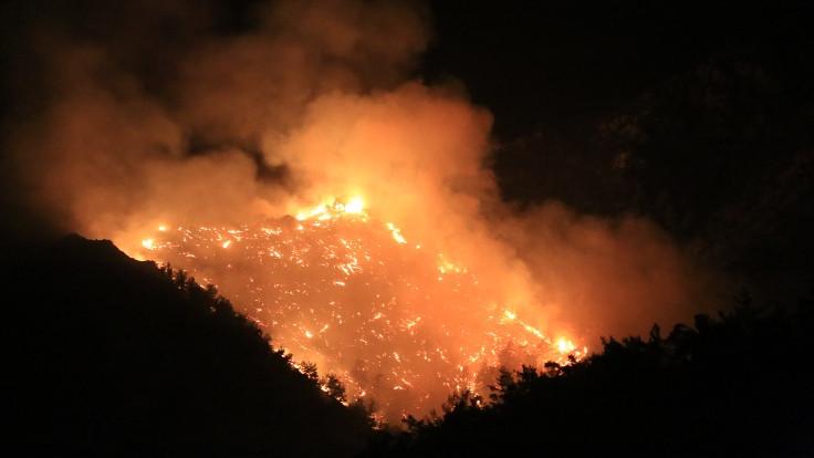 Marmaris ve Bodrum'daki orman yangınları kontrol altına alındı