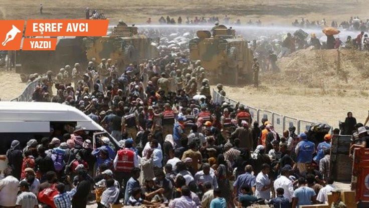Yurttaş, mülteci, göçmen, sığınmacı, Suriyeli