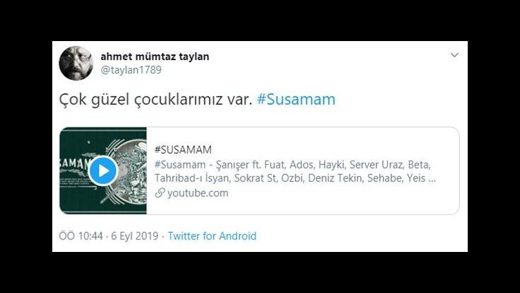 Sanatçılardan Susamam'a destek: Taş gibi, çok cam kırar! - Sayfa 2