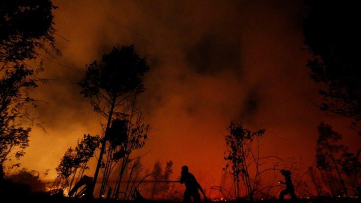 Endonezya'da 800 bin hektar orman yandı