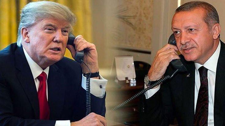 'Yumurtaları Trump'ın sepetine mi koyuyor?'
