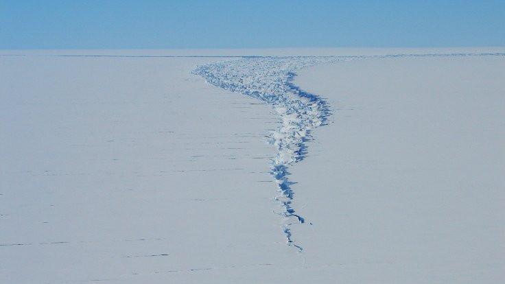 Antarktika'da 50 yılın kopuşu: Bu 'bebek dişi'