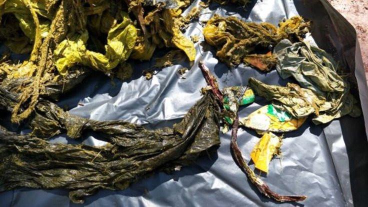 Ölen geyiğin midesinden yedi kilo plastik çıktı