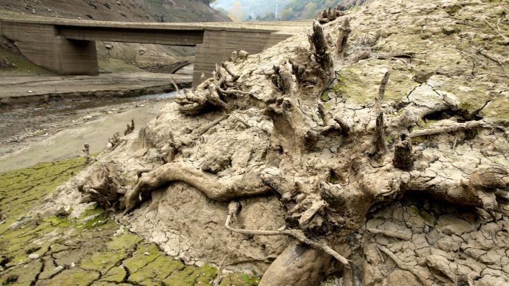 Baraj çekildi köprü çıktı - Sayfa 3
