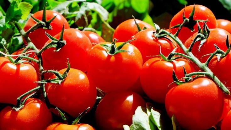 'Domates, biber ve salatalığın yüzde 15'i zehirli'