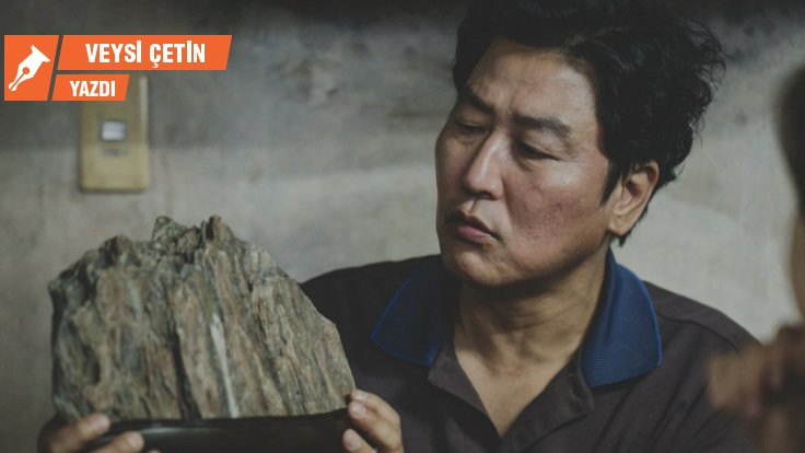 Parazit: Taş, koku ve hamam böcekleri