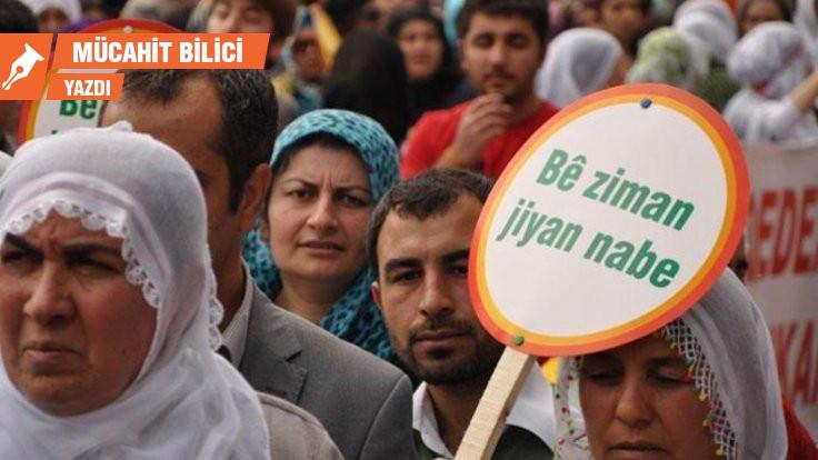 Türk sorunu değil Kürt sorunu