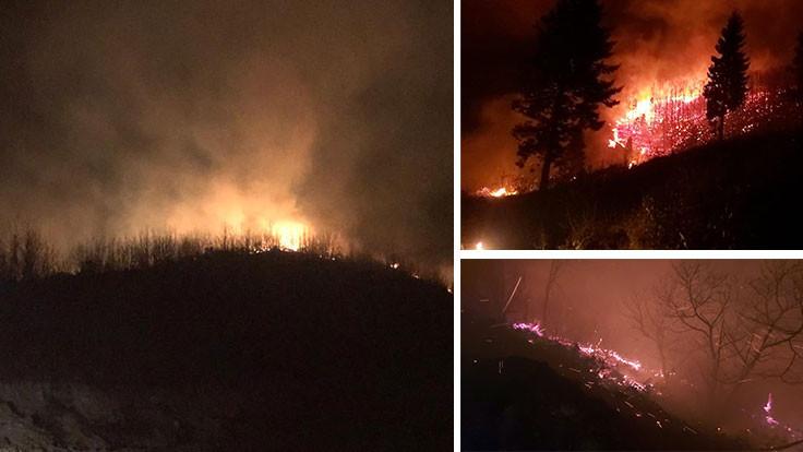 Trabzon ve Ordu'da aynı anda 43 yangın
