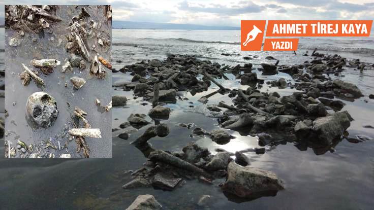 Kemikler vurur kıyılarına Kürt'ün denizinin