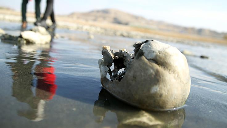 Van Gölü'ndeki kemikler inceleniyor