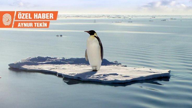 İklim krizini işaret eden beş küresel risk