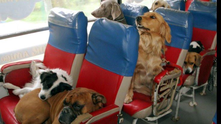 Otobüslere yeni düzenleme