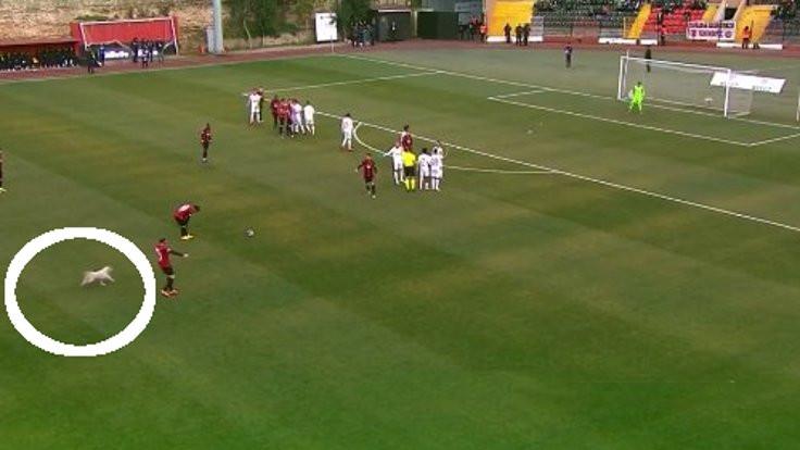 Karagümrük maçında sahada davetsiz misafir