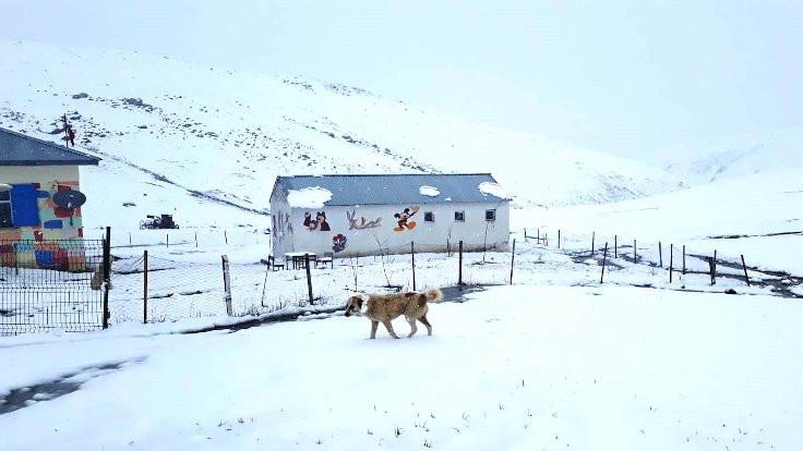 Nisan sonu lapa lapa kar