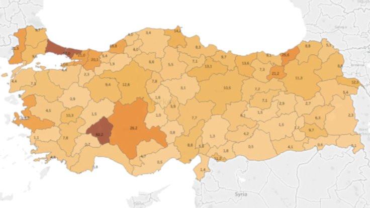 Türkiye'nin korona virüsü haritası