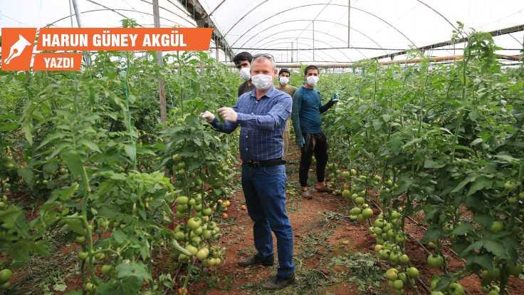 CHP'li belediyelerden tarım hamlesi