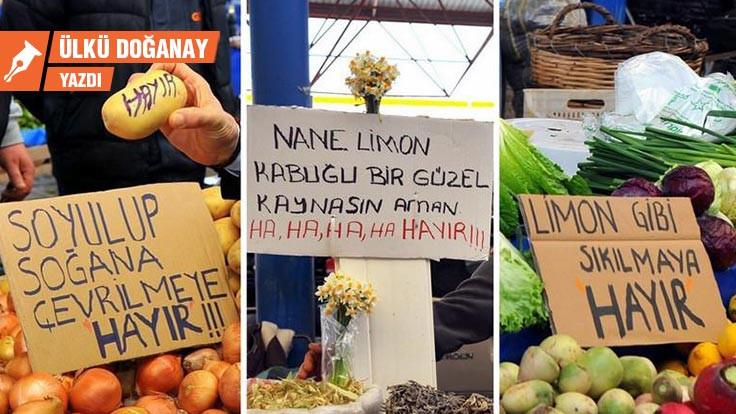 AKP'nin limonla imtihanı