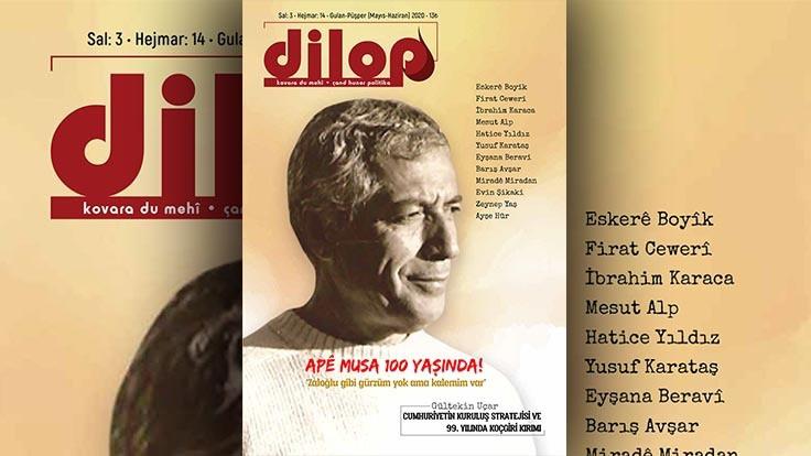 Dilop'tan online sayı