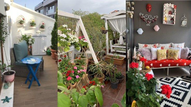 Ankara'nın en güzel balkonu seçildi