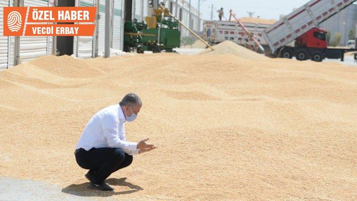 Mardinli çiftçilerin DEDAŞ çilesi bitmiyor