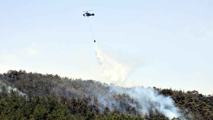 Muğla ve Çanakkale'de orman yangını