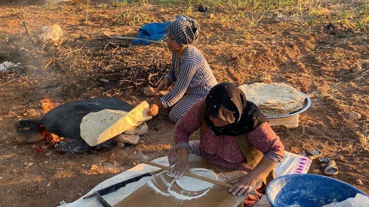 Mevsimlik işçiler: Hepsi Kürt hepsi yoksul... - Sayfa 3