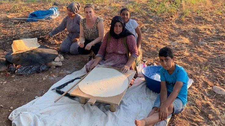 Mevsimlik işçiler: Hepsi Kürt hepsi yoksul... - Sayfa 4