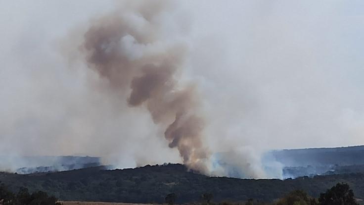 Bulgaristan'daki yangın Türkiye sınırına ilerliyor