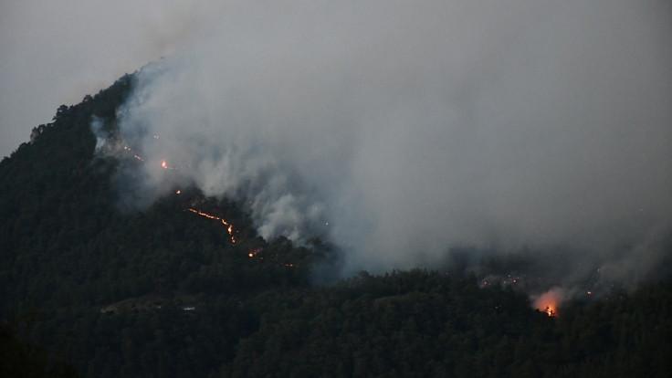 Manisa'daki orman yangını bir mahalleye sıçradı