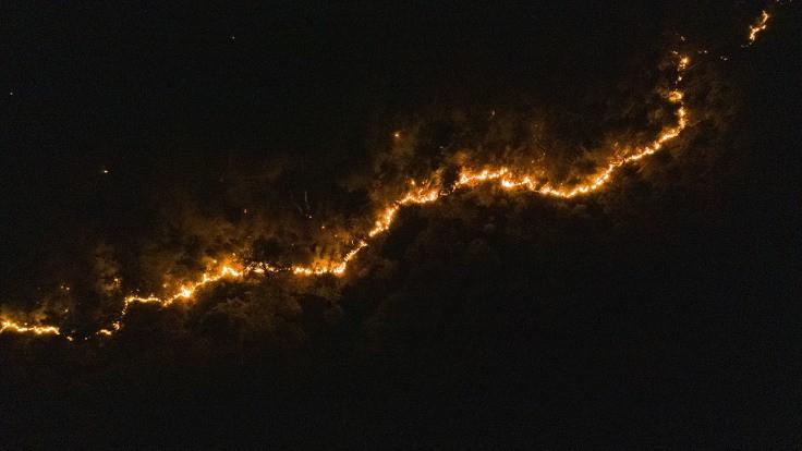 İzmir'in 3 ilçesinde orman yangını