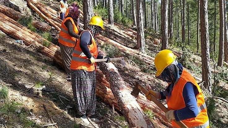 Orman köylülerinden faiz alınmayacak