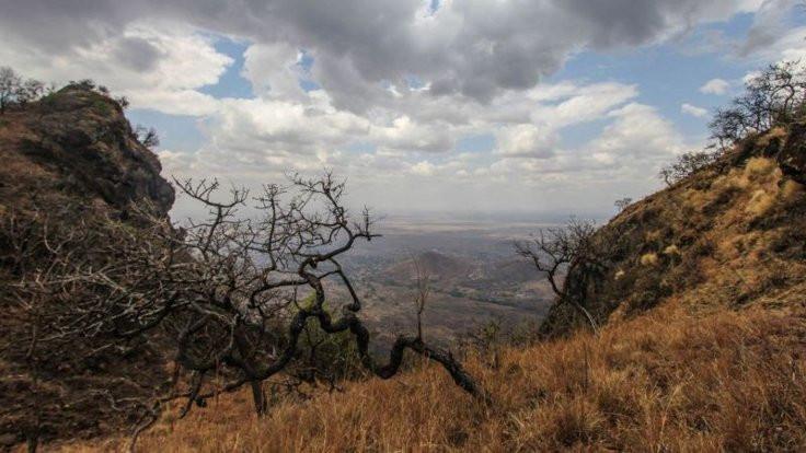 Uganda'da 200 çıplak firari aranıyor