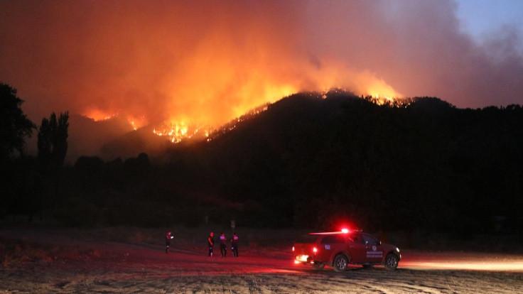 Adana'da orman yangını: 1 mahalle boşaltıldı