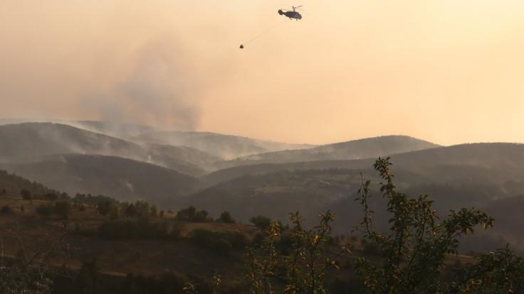Uşak'ta orman yangını kontrol altına alındı