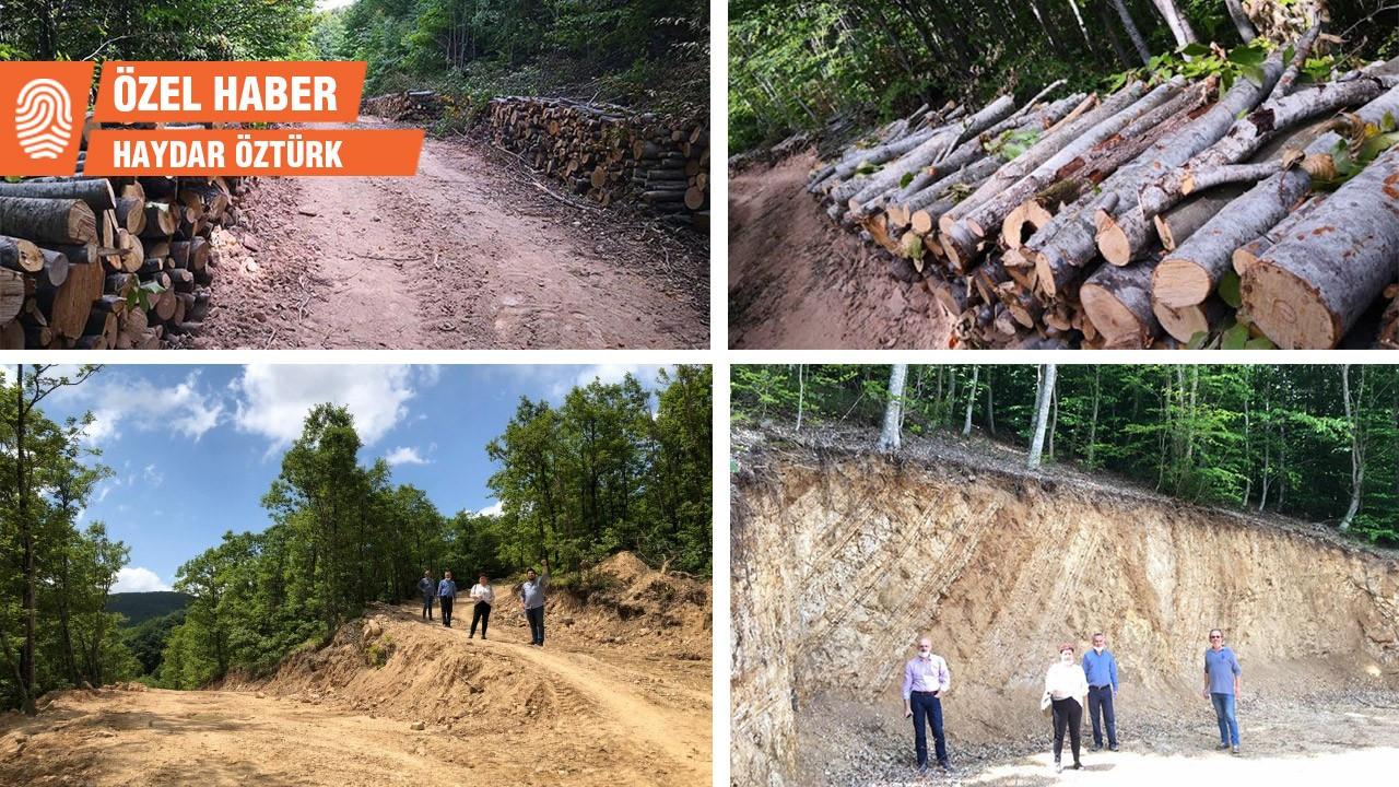 Şahin Dağları'nda ağaç kesiminin ardından sondaja da başlandı