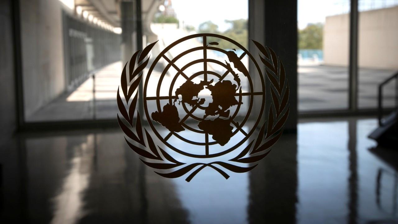İran ve Orta Afrika Cumhuriyeti'nin BM'de oy kullanma hakkı askıya alındı