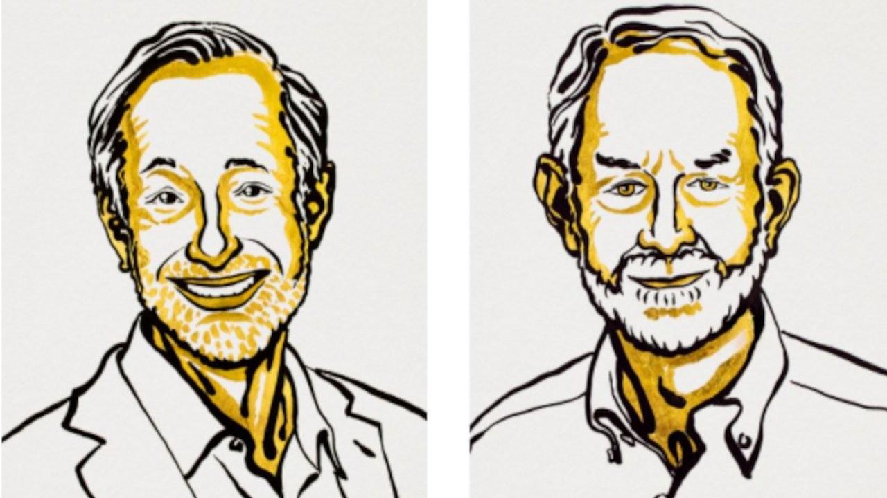 Nobel Ekonomi Ödülü Milgrom ve Wilson'a