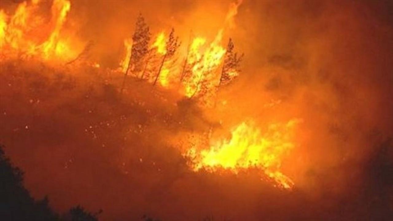 'Orman yangınları araştırılsın' önergesine AK Parti ve MHP'den ret