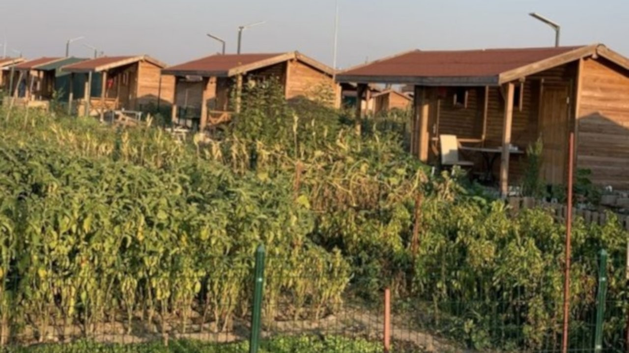 Yavaş açıkladı: Ankara'da bahçe sulamaya kısıtlama