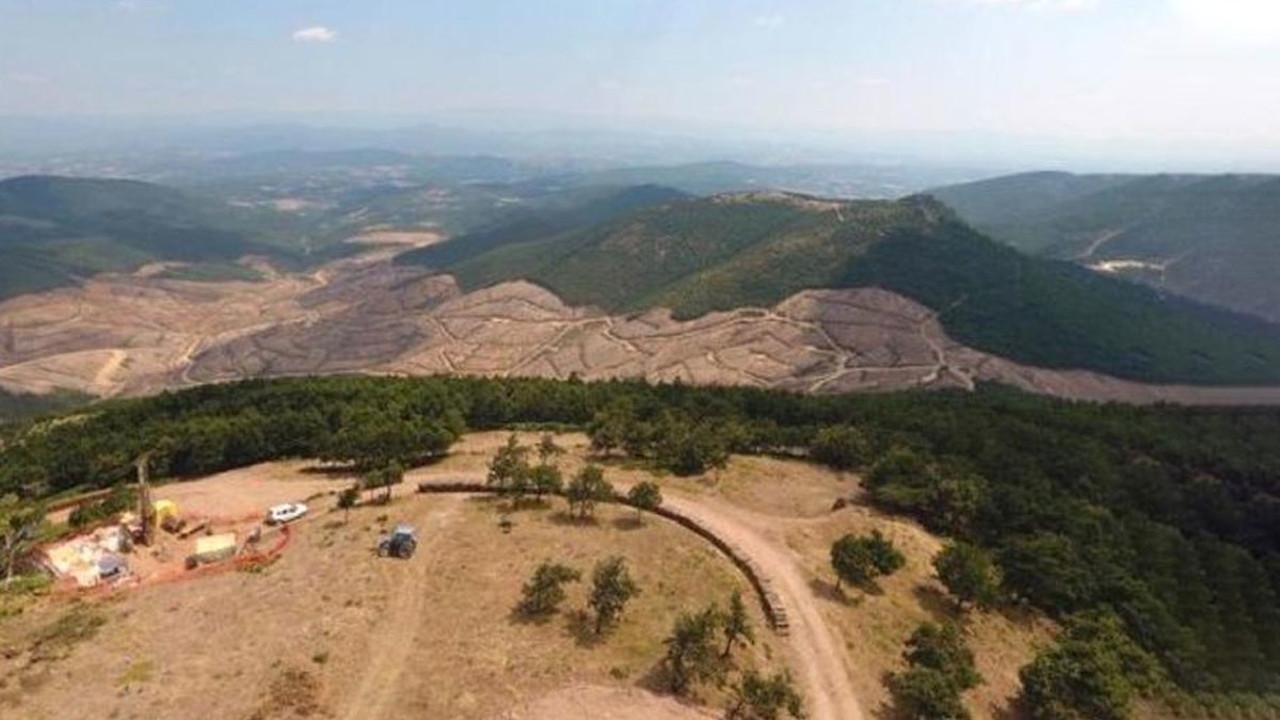 Alamos Gold: Kaz Dağları'ndan gitmiyoruz