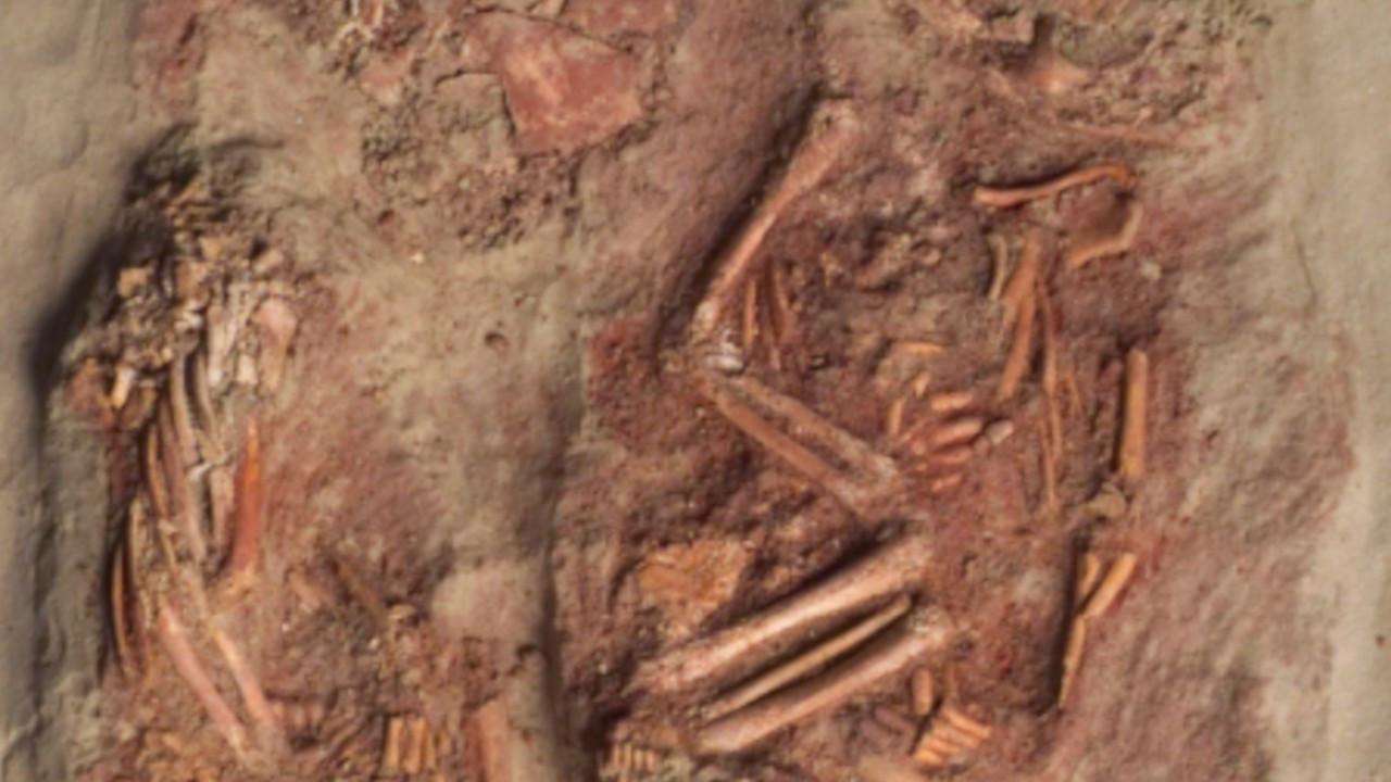 Kardeşliğin tarihini değiştirecek 30 bin yıllık keşif