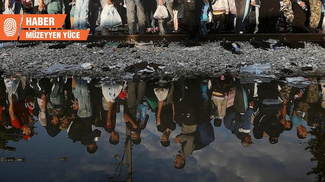 Prof. Erdoğan: Mülteci karşıtlığı sosyal kırılmaya neden olabilir